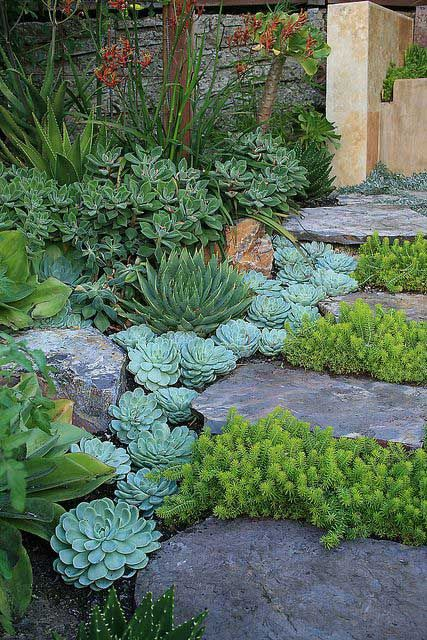Backyard and front garden landscaping ideas #hinterhof # ideas #scale landscaping ...