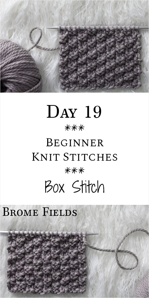 Learn how to knit the Box Knit Stitch in this Video Tutorial : Day 19 of the 21 ...